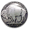 Buffalo Nickel Concho